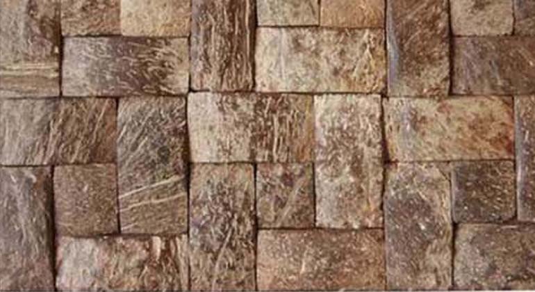 Coconut shell material