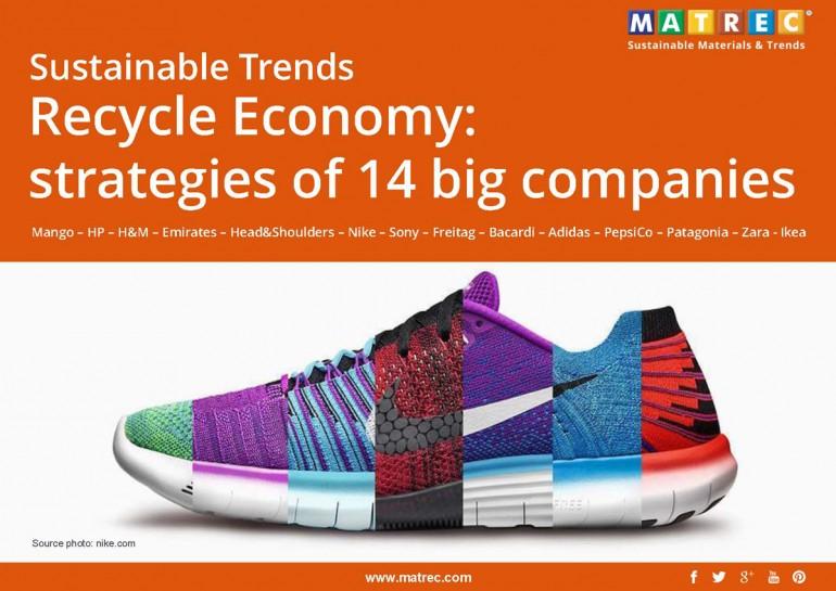 Report. Recycle Economy: strategies of 14 big companies