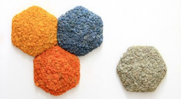 Piastrelle con i licheni