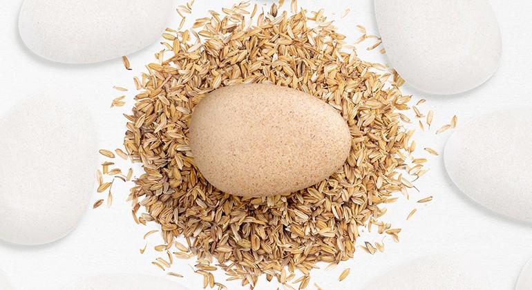 Biodegradable bio-plastic with rice husk material